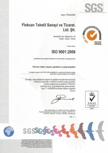 ıso 9001 turkçe